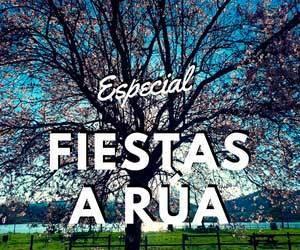 Especial Fiestas verano A Rúa 2018